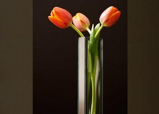 V1-Tulips