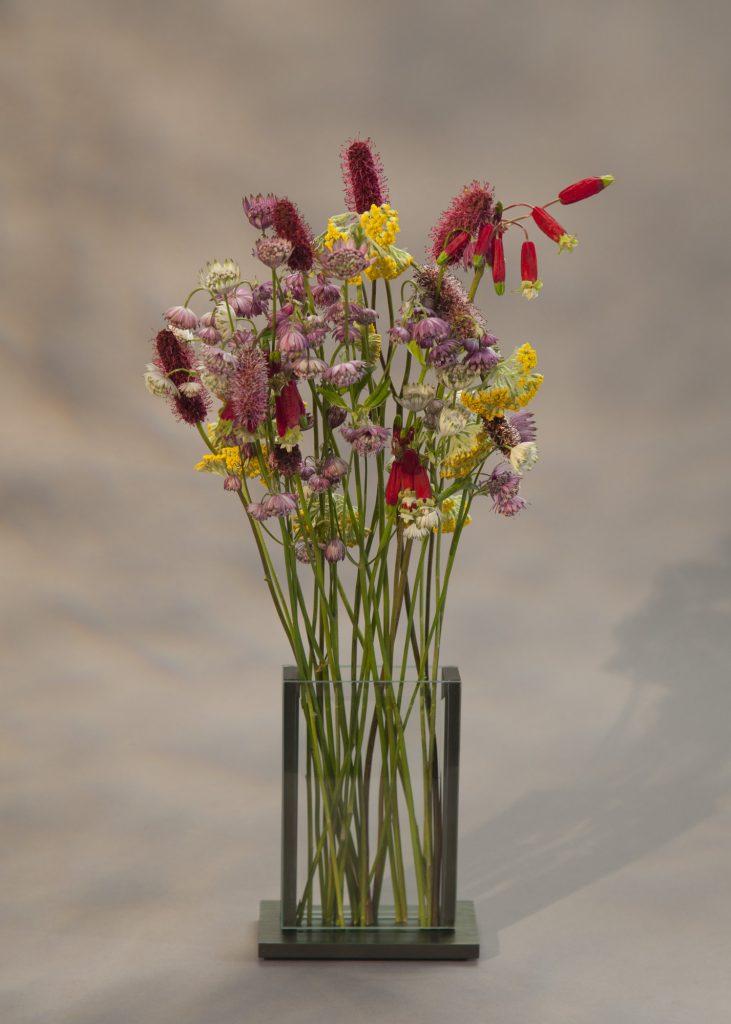 V4 - WILD FLOWERS