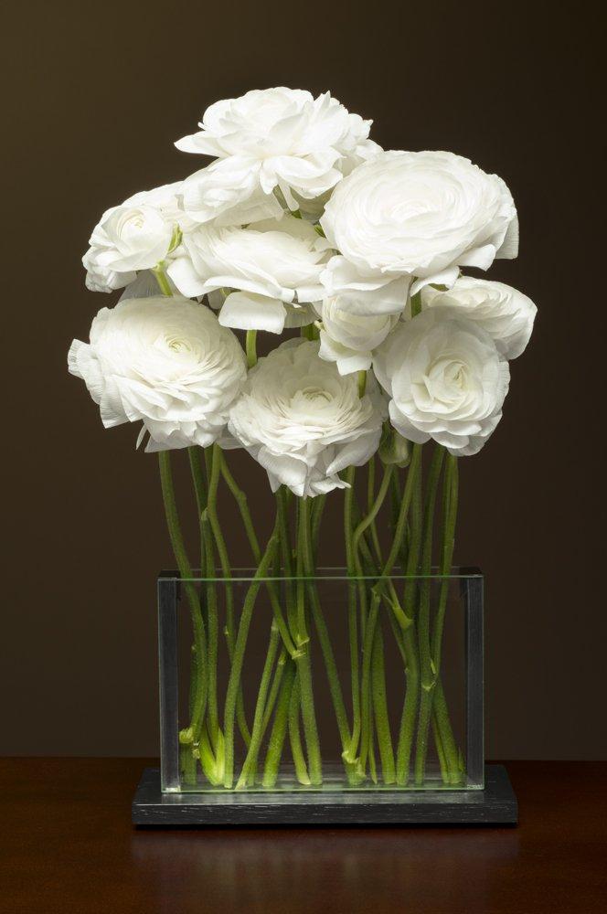 Style H1-White ranunculus
