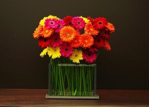Style H3-Gerbera daisies