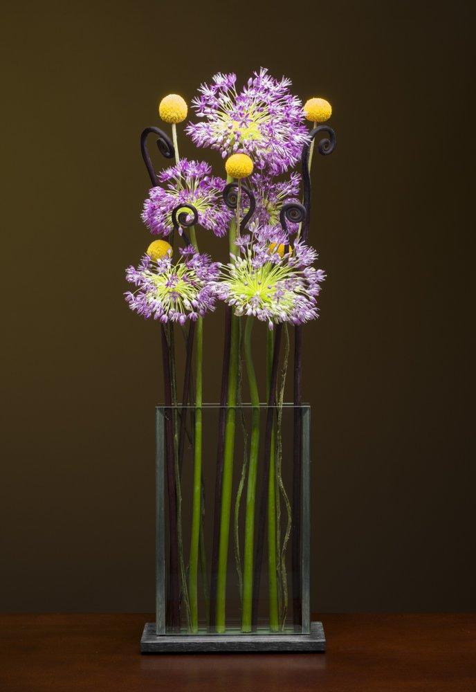 V2- Allium, Fiddle head ferns and Crespidia